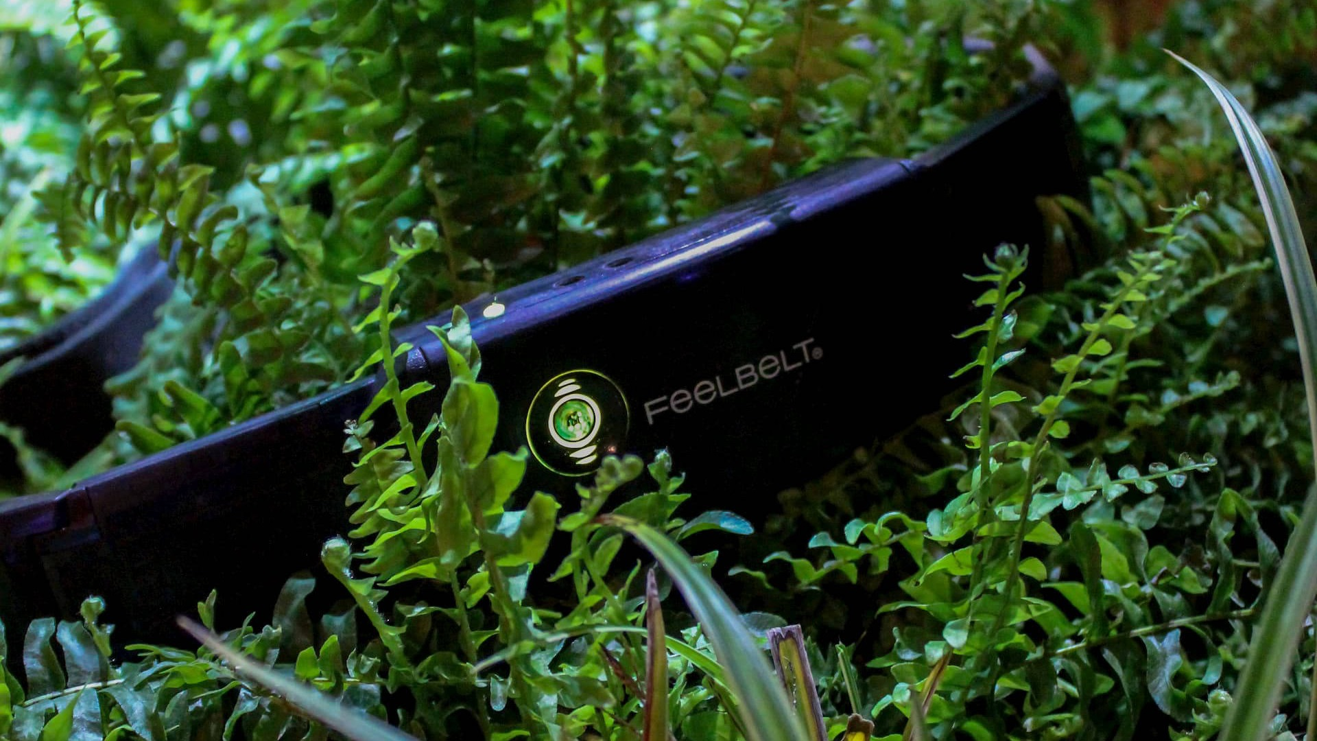 Feelbelt In grass showing companys eco friendly nature