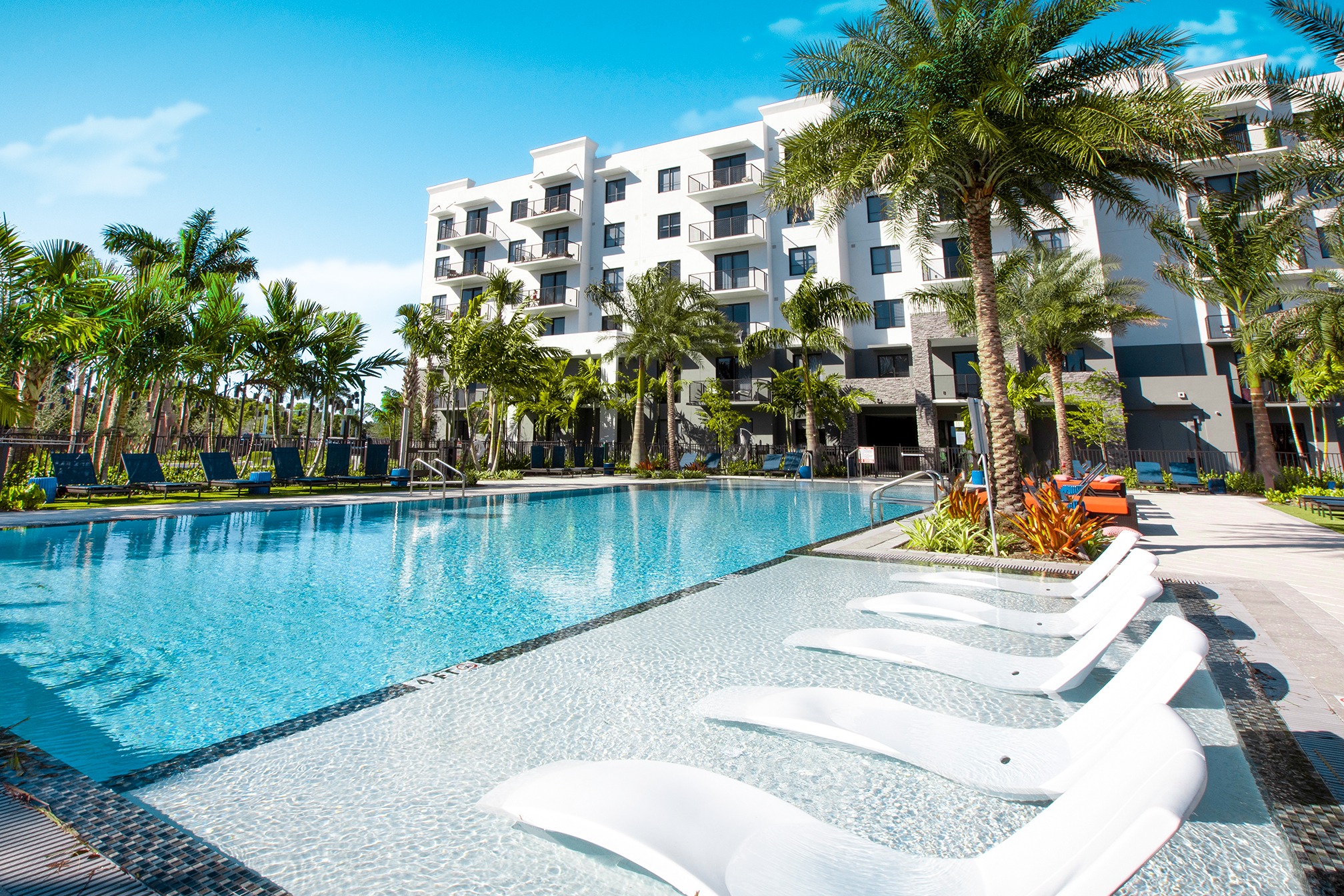 sanctuary pool amenity surrounded with palm trees and lounge chairs