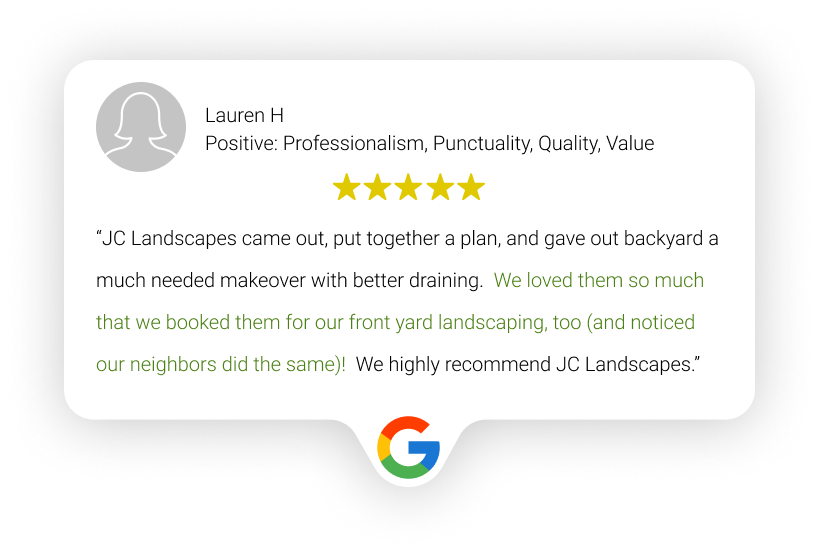 example of customer review