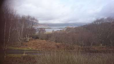 View from Beach Bridge Cottage