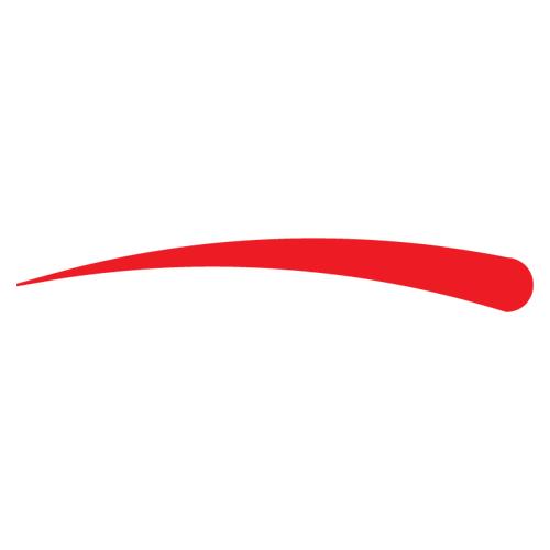 Domazinga Logo
