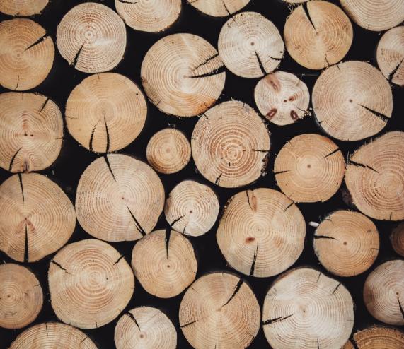 I Parquet di Menconi sono realizzati con legni selezionatissimi