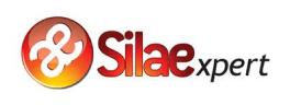 logo de Silae, logiciel de paie qui s'intègre avec Skello