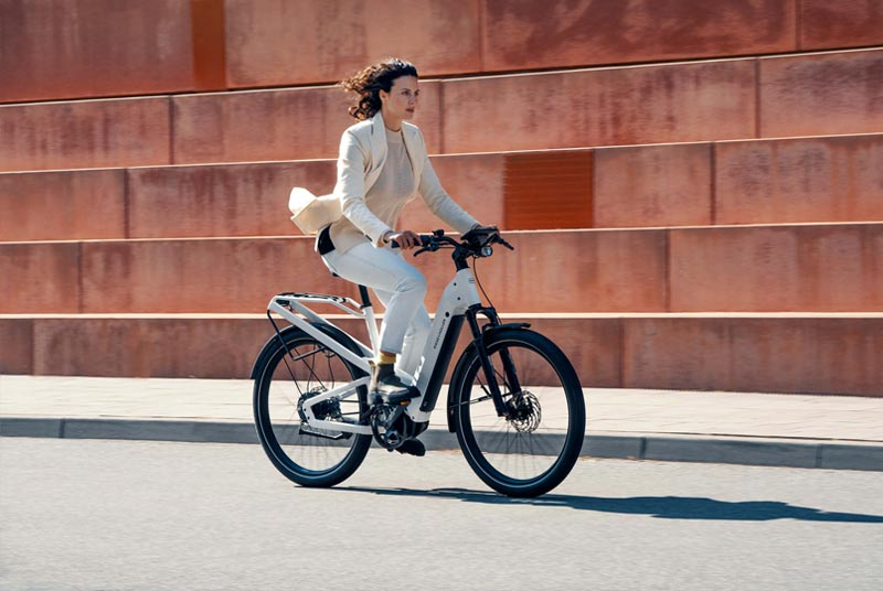 Riese & Müller Multicharger bei Lenz E-Bikes | Fahrrad Lenz in Kelkheim