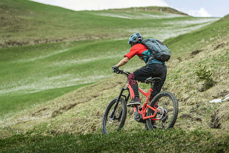 Riese & Müller Delite bei Lenz E-Bikes | Fahrrad Lenz in Kelkheim