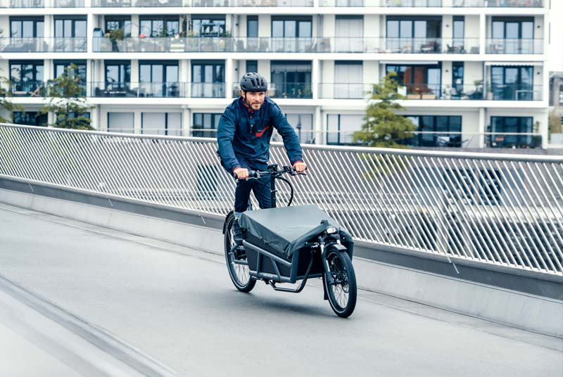 Riese & Müller Load 75 bei Lenz E-Bikes | Fahrrad Lenz in Kelkheim
