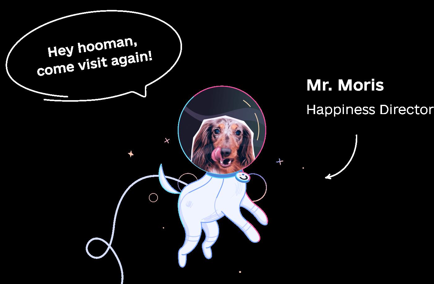 Awesomic dog Moris Happiness Director
