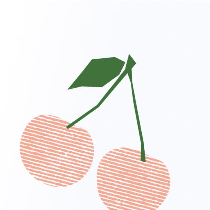 Illustrations for Perfekto 5