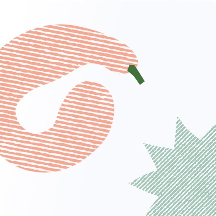 Illustrations for Perfekto 6
