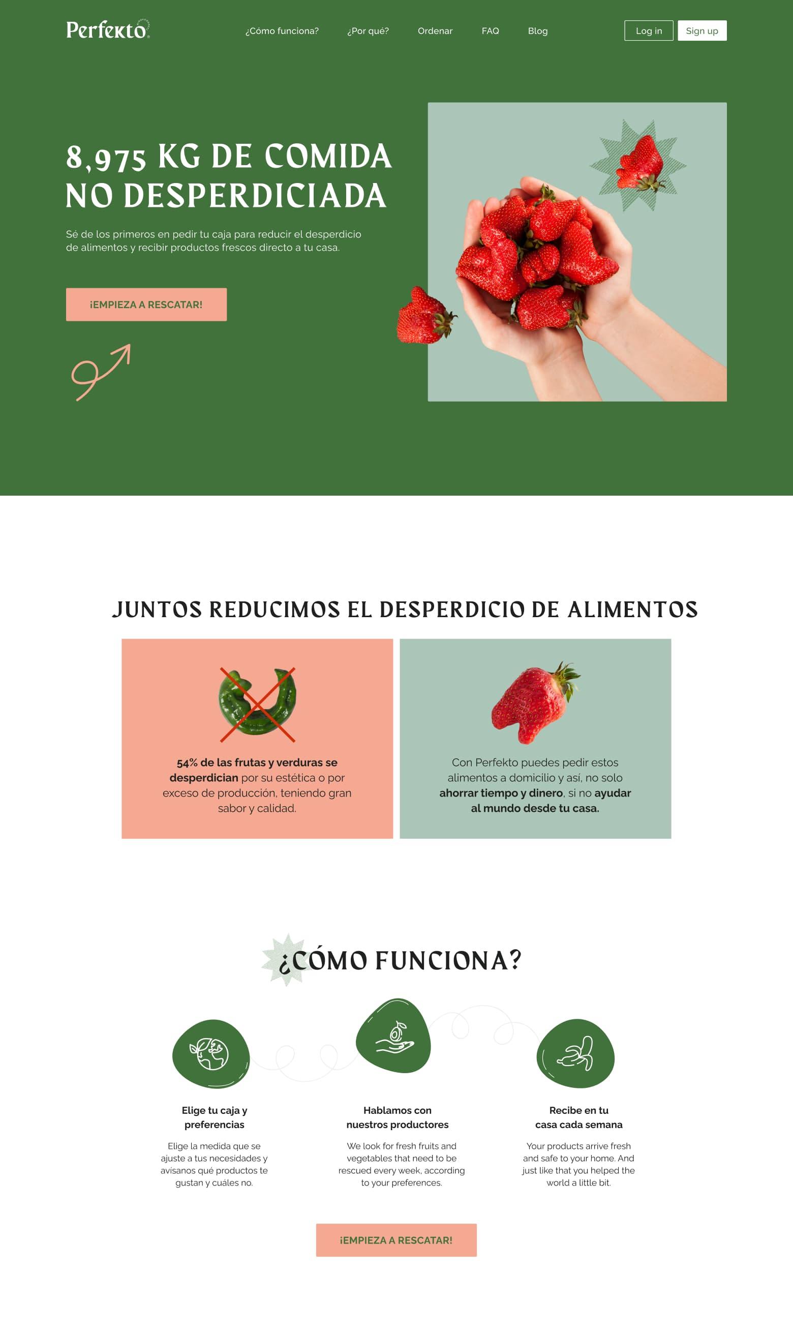 Perfekto Website Design 1