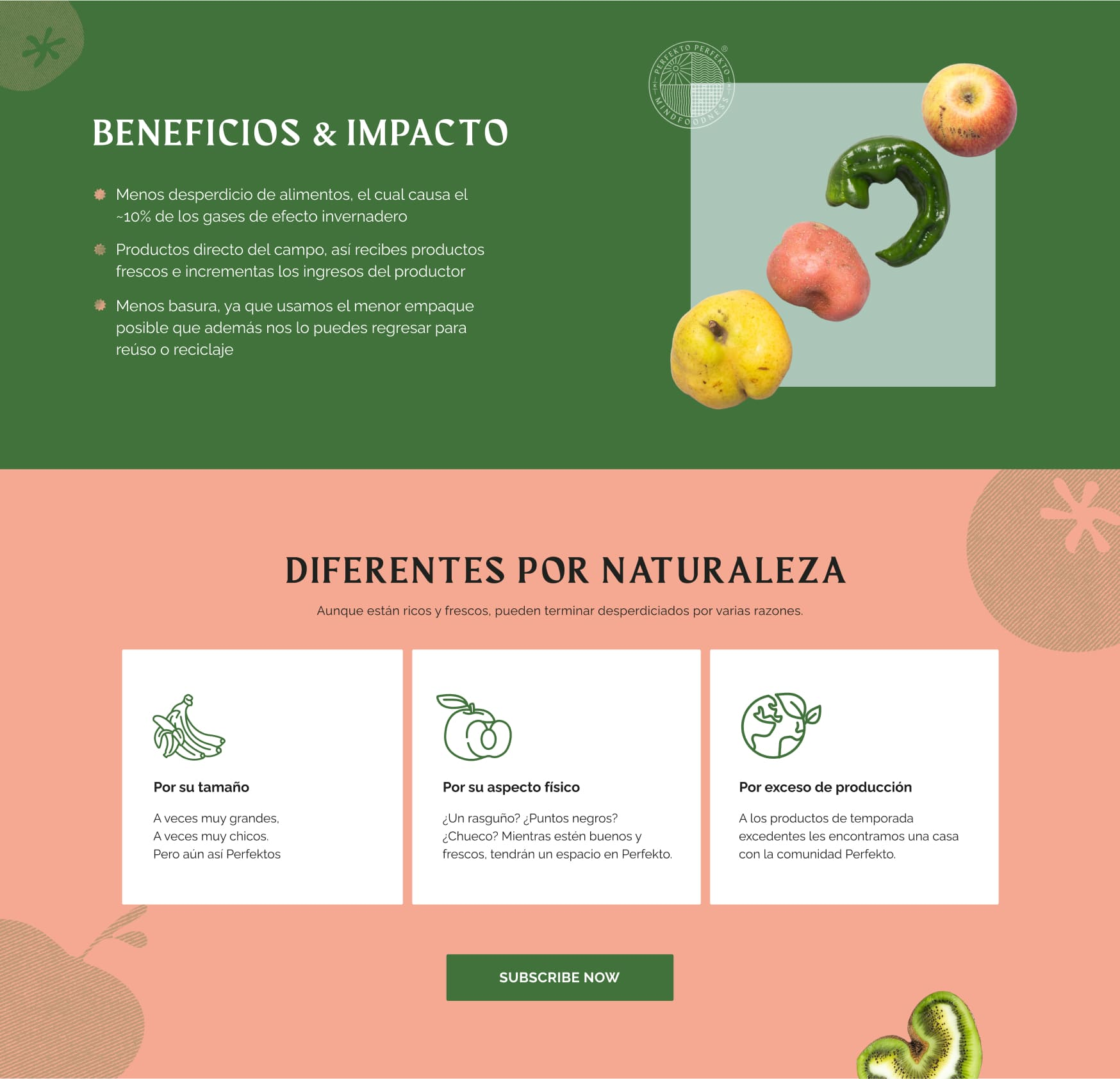 Perfekto Website Design 2