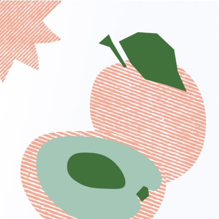 Illustrations for Perfekto 8
