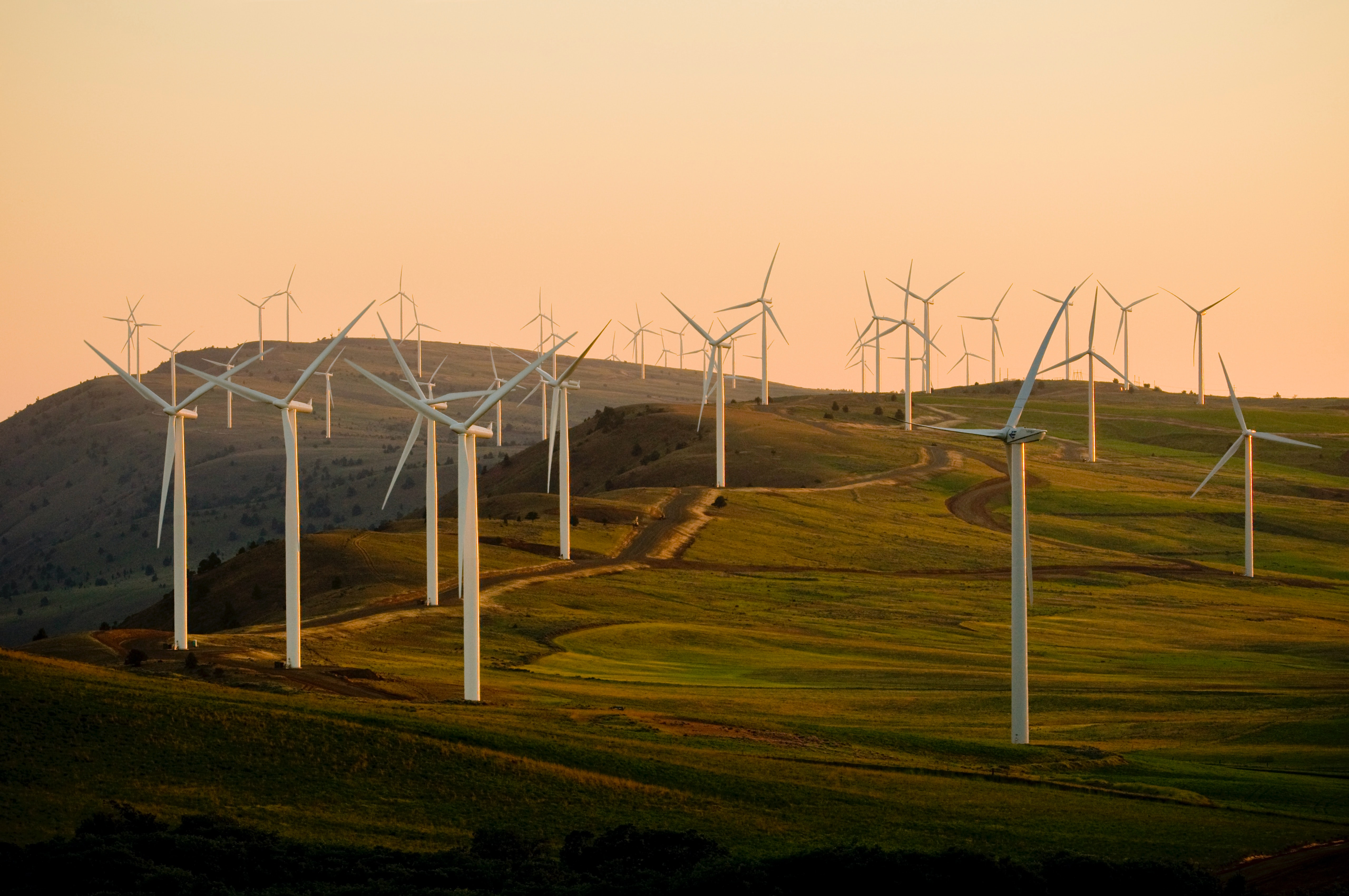 In this post, we cover the key differences in investing in renewable energy within owned and operated facilities and factory based operations.
