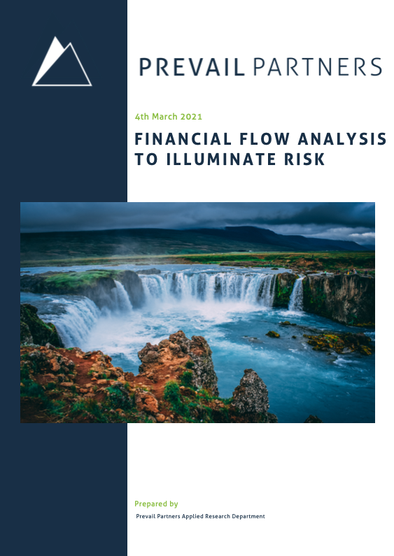 FINANCIAL FLOW ANALYSIS TO ILLUMINATE RISK