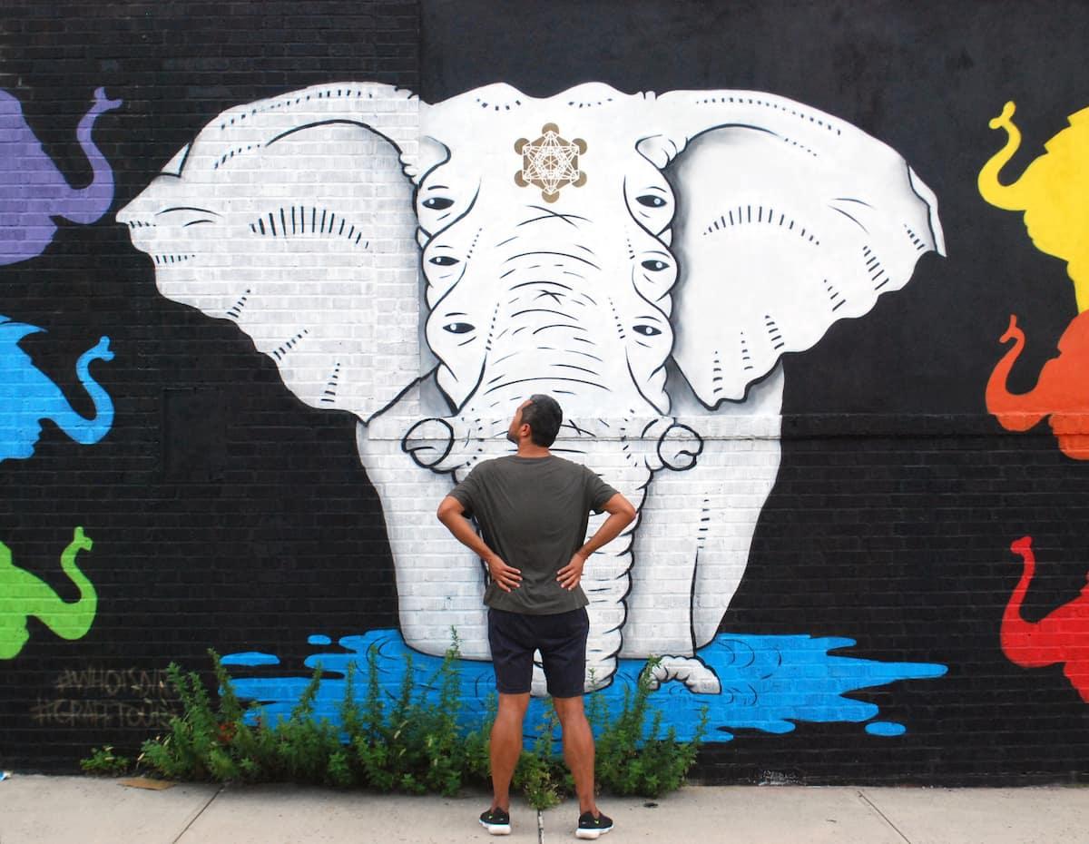"Spark'n Spotlight: Ari ""The Brooklyn Street Artist"" Coello"