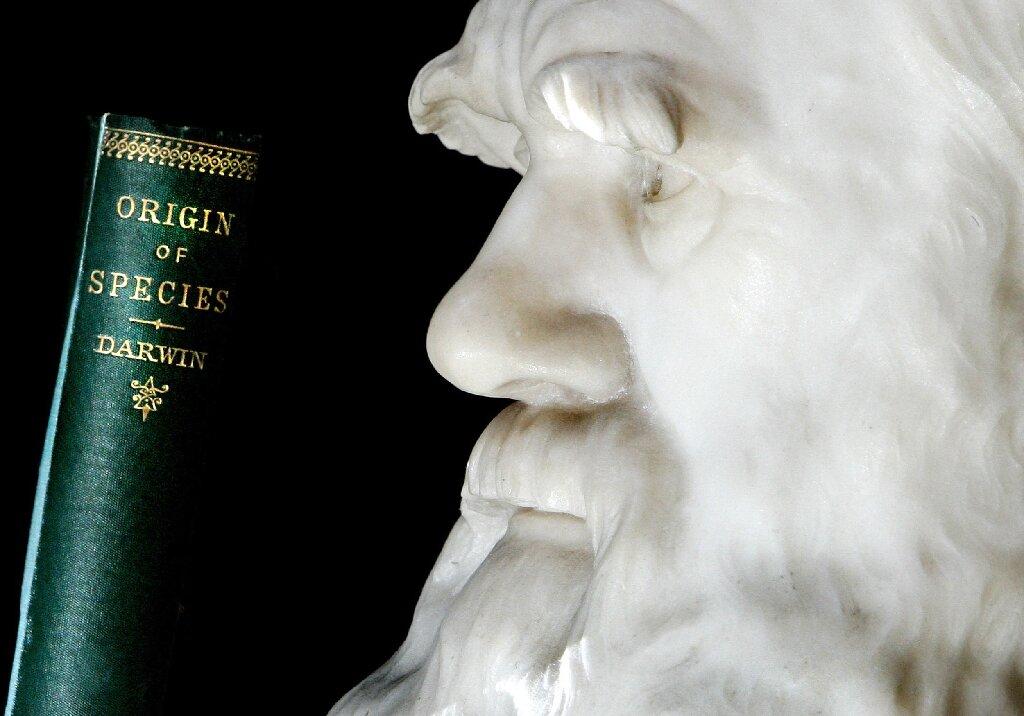 istoria celor doua carnetele cu schite ale lui charles darwin