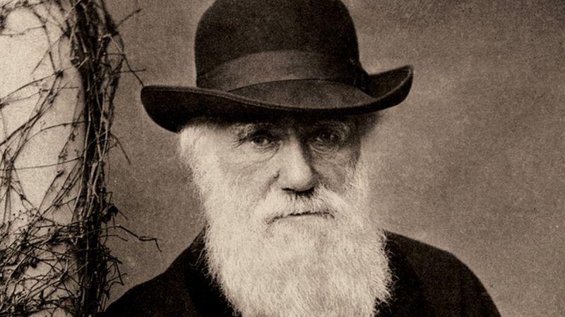 charles darwin manuscris