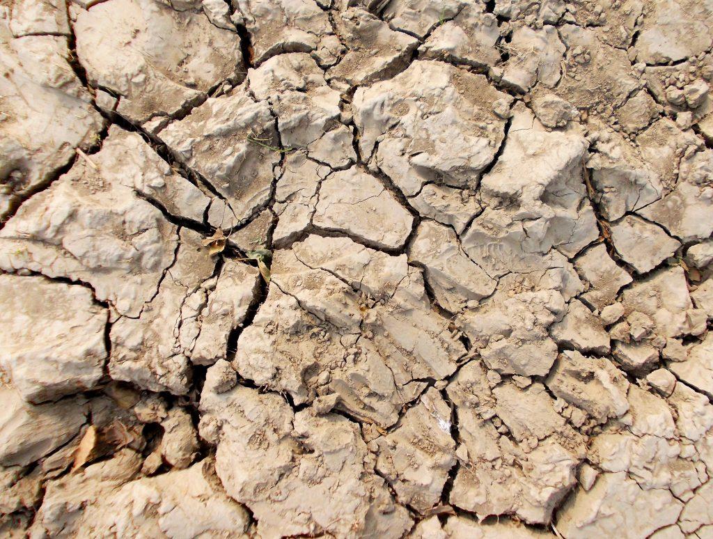 poluarea solului seceta