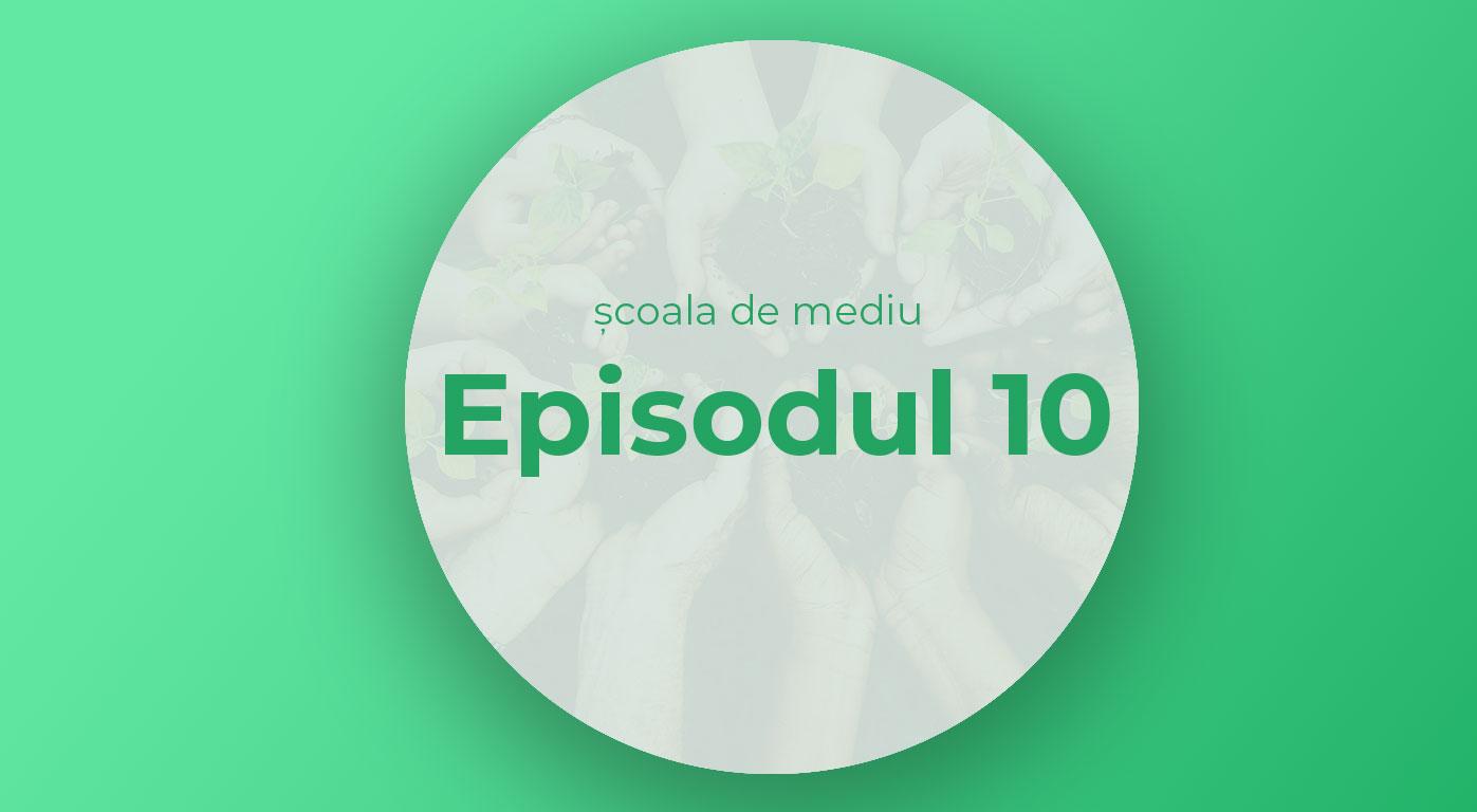 Episodul 10 | Cum facem cumpărături prietenoase cu mediul