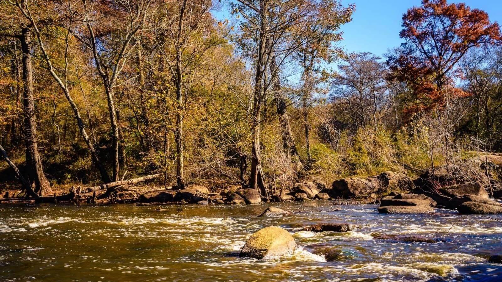 STUDIU. Schimbările climatice afectează debitul râurilor