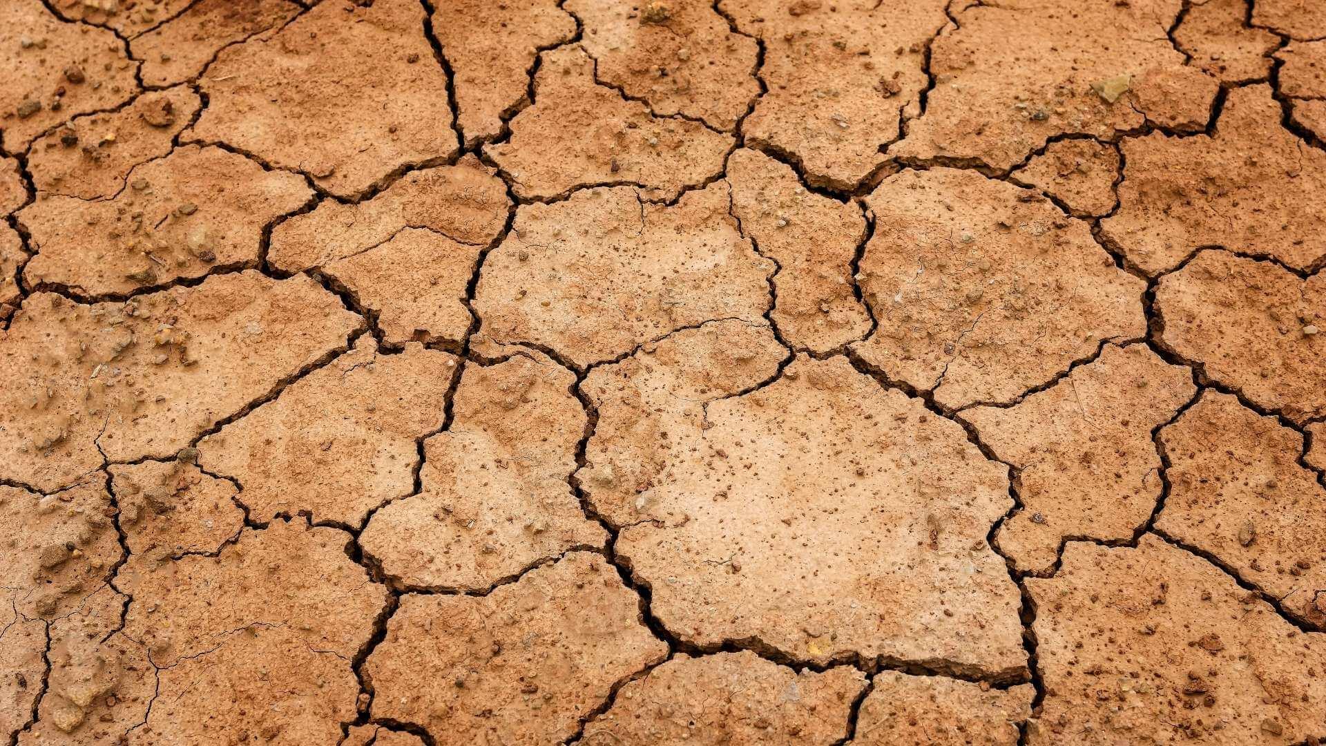 Perioadele recente de secetă din Europa sunt cele mai grave din ultimii 2.000 de ani
