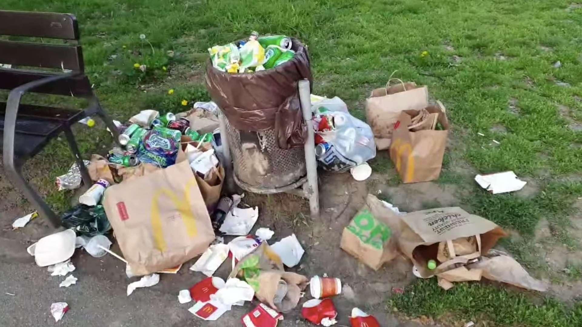 EDITORIAL. Un parc devine un tomberon uriaș plin cu gunoi. Cât e din vina autorităților și cât din vina cetățenilor?
