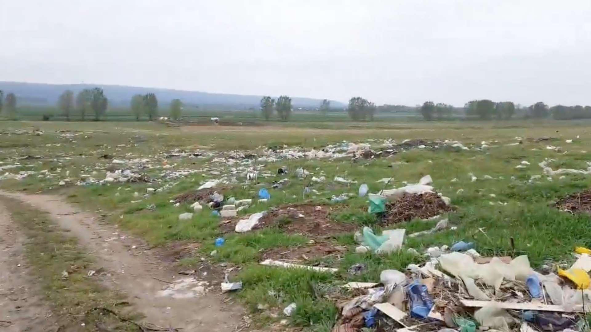România 2021: pepeni care cresc printre gunoaie