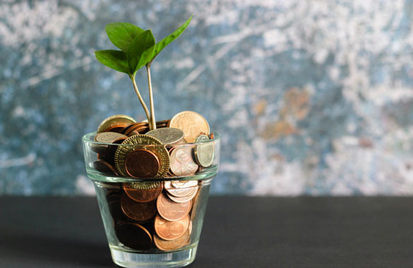 Image of jar of coins with a plant sprouting out of it