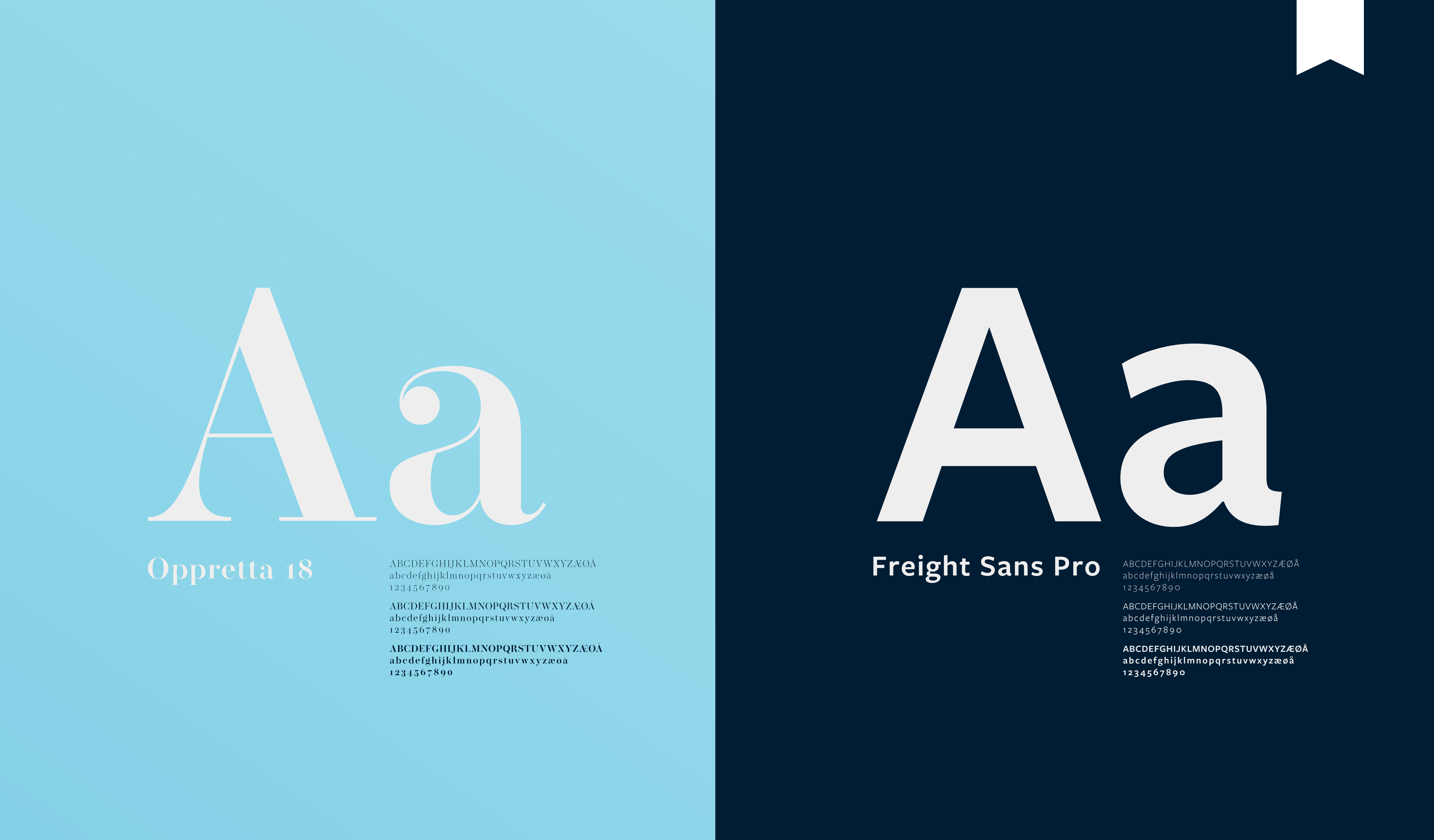 Utsnitt av visuell profil med valg av Typeface/ Word Translation