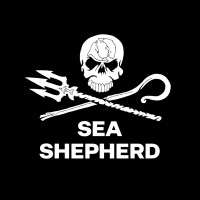 https://www.seashepherdglobal.org/