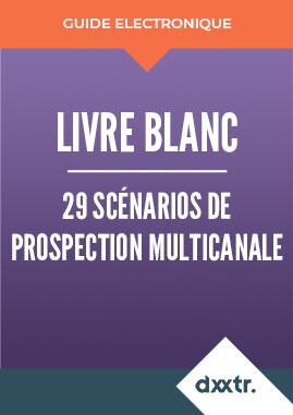 Livre blanc 29 scénarios de prospection