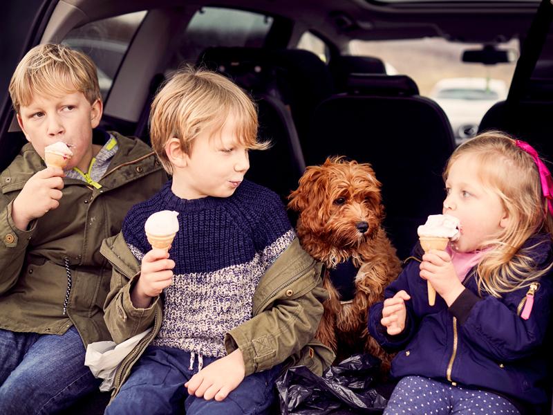 Kinder und Hund am Eis essen.