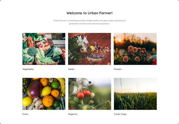 urban farmer seeds mockup