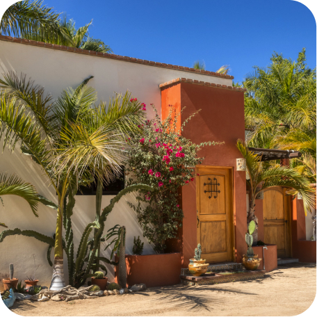 Mexican casa facade with pink bougainvillea and palm trees