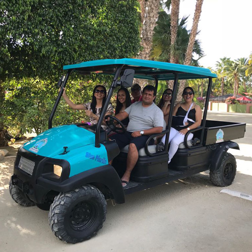 family riding in a blue golf cart past towering palm trees