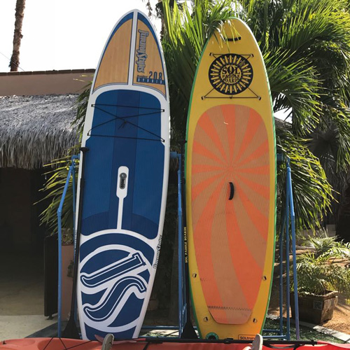 surfboards in orange and blue against palm trees