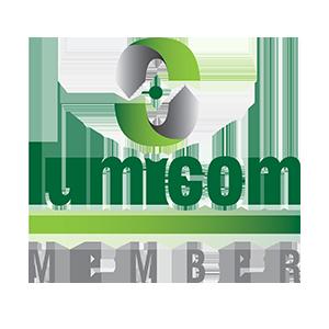 Lumicom Logo