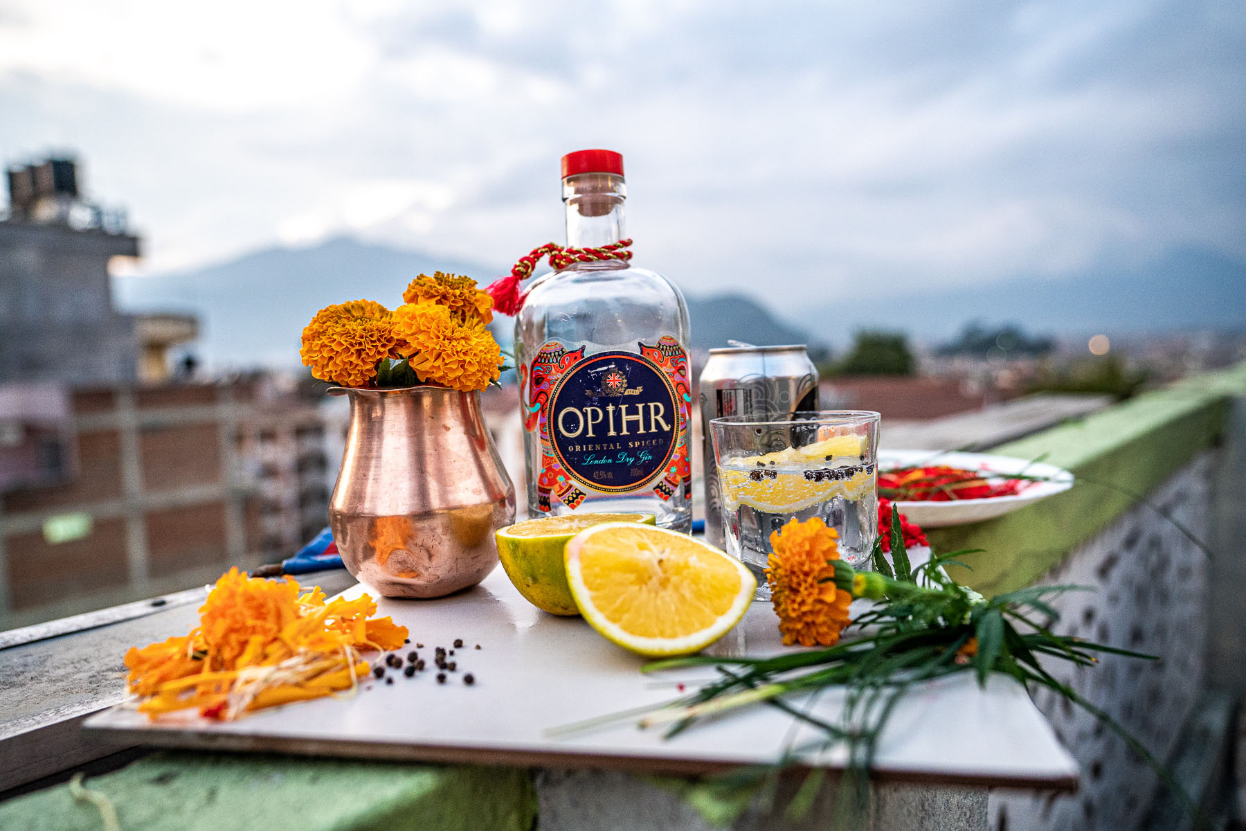 Journey Home with Ophir Gin