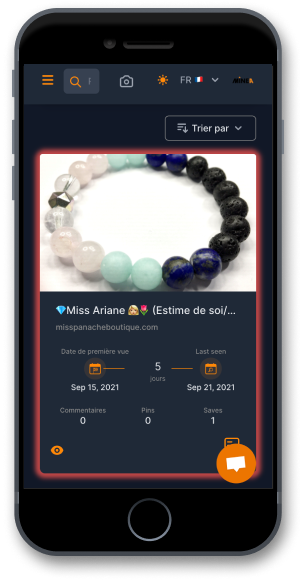 Application Pinterest spy adspy Minea mobile