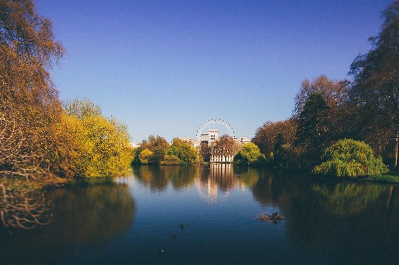 View of the lake with Buckingham place in the background at St. James's Park