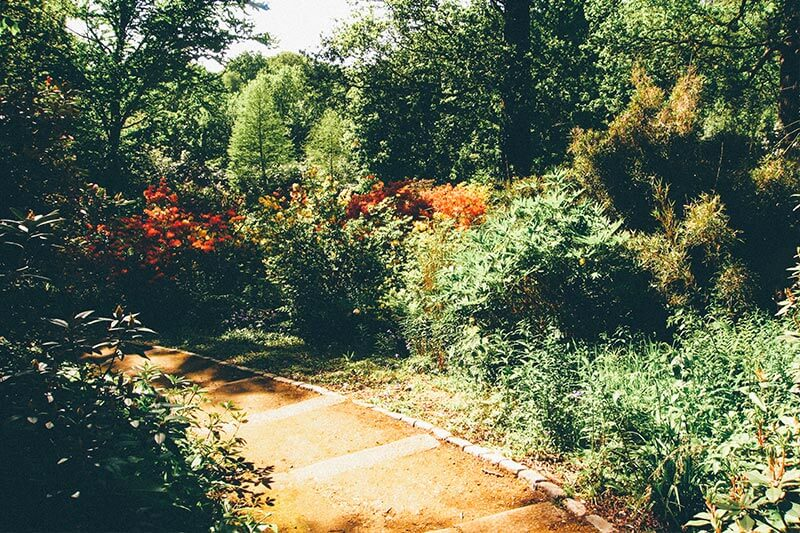 Pathways at Cannizaro Park