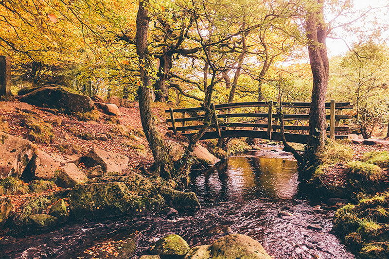 The walk through the woods at Padley Gorge