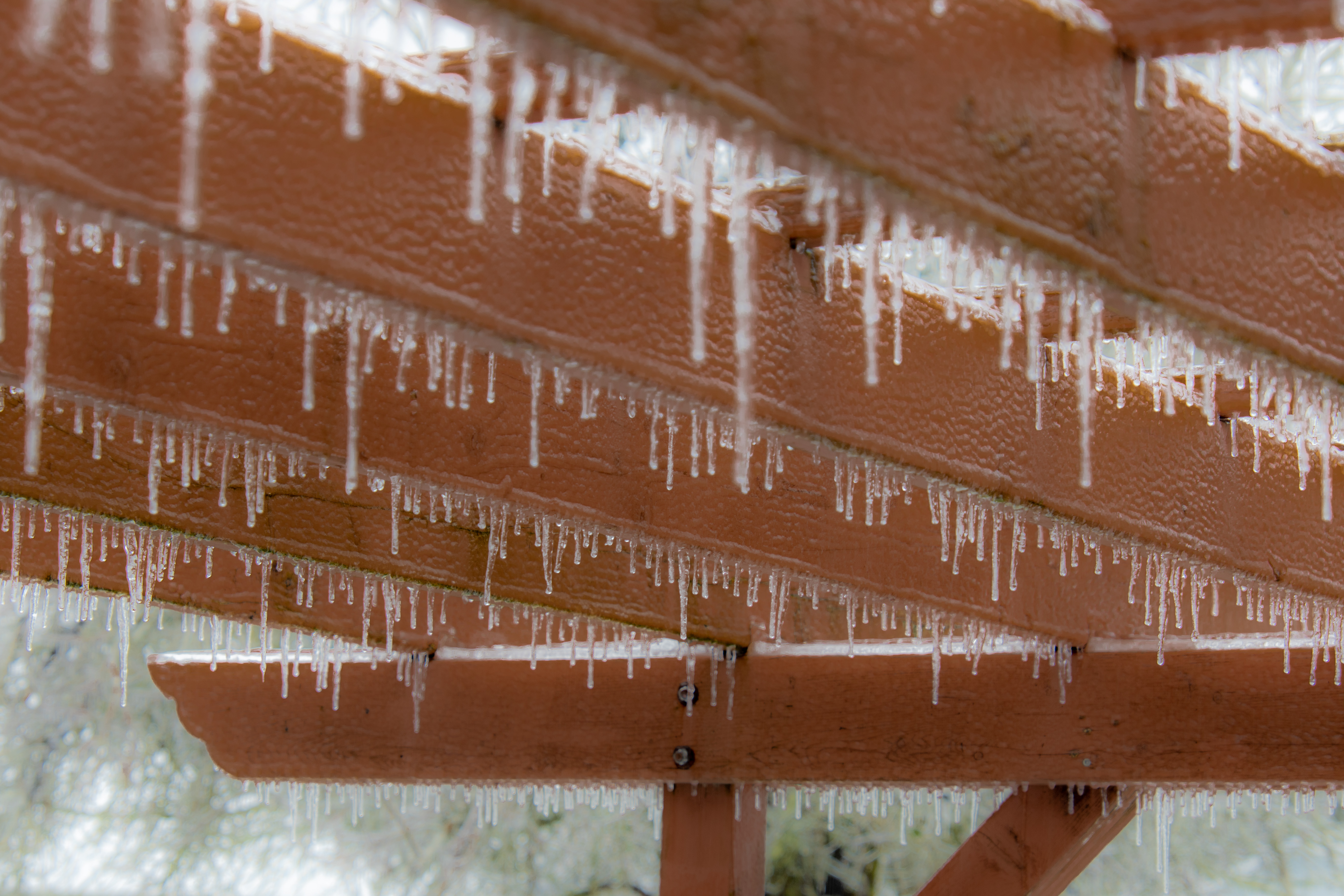 Dreamy looking icicles hanging from a pergola.