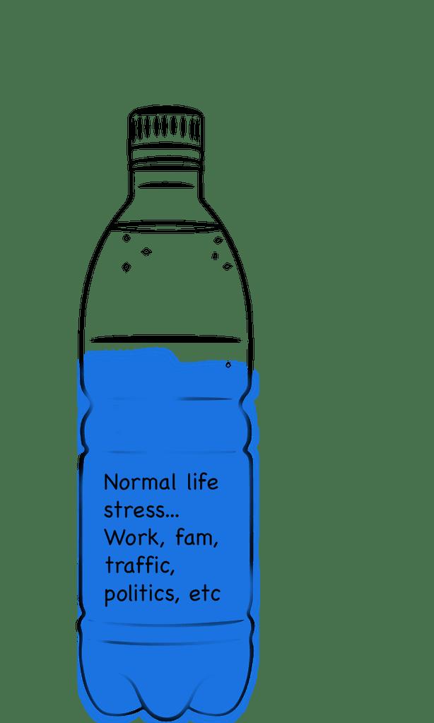 normal life stress