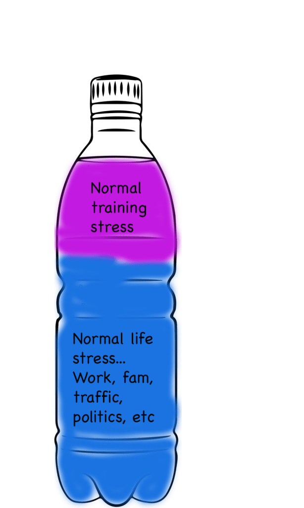 normal life stress plus normal training stress