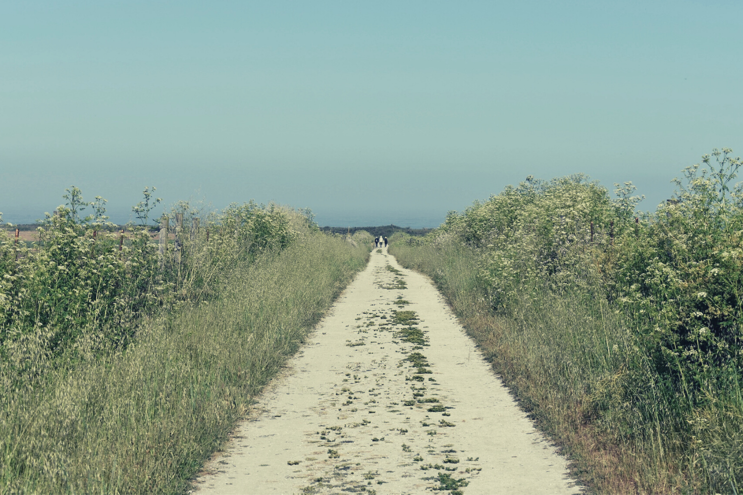 A view down a long, straight dirt road and into the distance