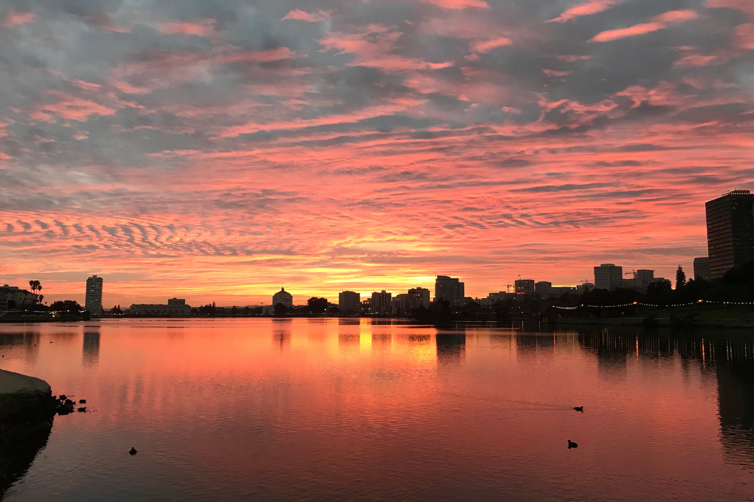 An extreme colorful sunset over Lake Merritt in Oakland, California