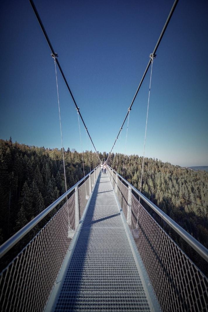 bridge suspended by steel links