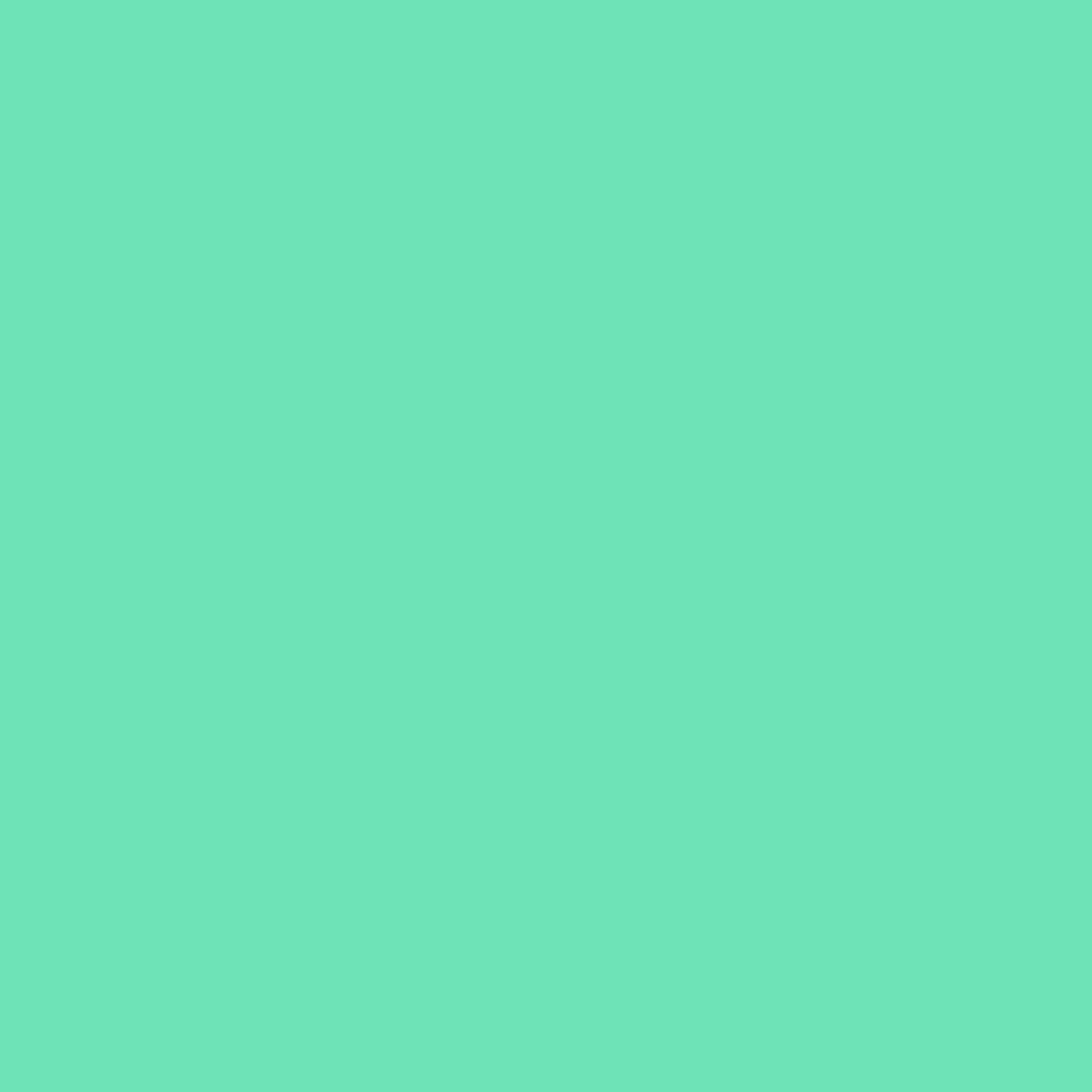 Mint Circle