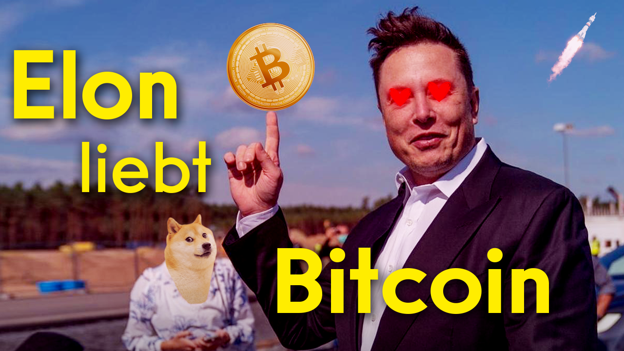 Youtube: Elon liebt Bitcoin